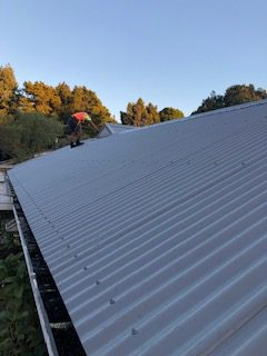 steel roofing experts Auckland